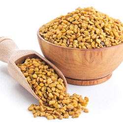 fenugreek-thumb