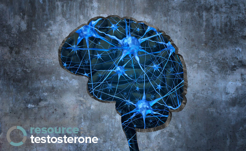 Testosterone & Cognitive Function