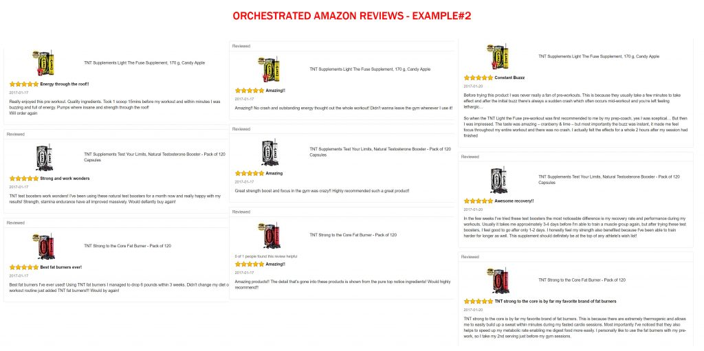Fake Amazon Reviews 2