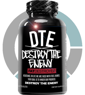 Destroy The Enemy