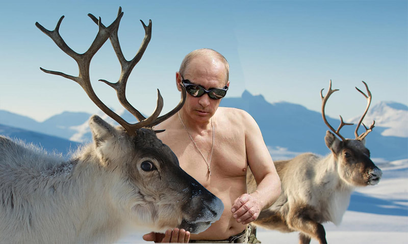 Deer Leader: How Putin Stays Manly